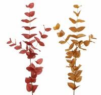 """Zweig """"Herbst"""", 2er Set jetzt für 4.95 Euro kaufen im Frank Flechtwaren und Deko Online Shop"""