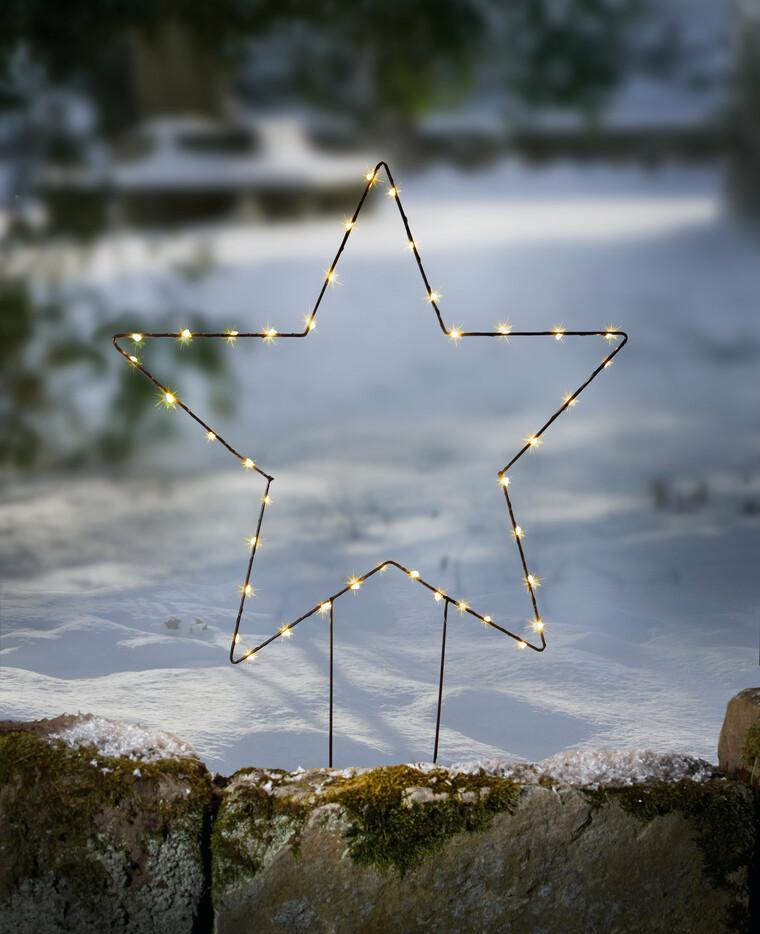 Led Gartenstecker Stern
