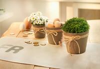 """Pflanzer """"Jute mit Schleife"""", 3er Set jetzt für 4.95 Euro kaufen im Frank Flechtwaren und Deko Online Shop"""
